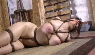 Affianced big knockers slut regarding a ballgag abused hard